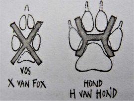 X van fox, H van hond Plaatje uit boek